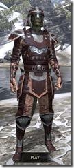 Breton-Full-Leather-Argonian-Male-Front_thumb.jpg