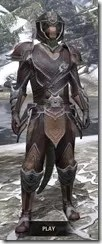 Redguard-Full-Leather-Argonian-Male-Front_thumb.jpg