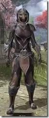 Redguard-Full-Leather-Khajiit-Female-Front_thumb.jpg