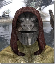 Refabricated-Light-Hat-Argonian-Male-Front_thumb.jpg