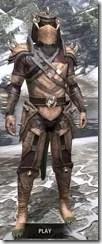 Wood-Elf-Full-Leather-Argonian-Male-Front_thumb.jpg