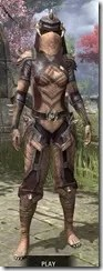 Wood-Elf-Full-Leather-Khajiit-Female-Front_thumb.jpg