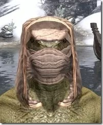 Akaviri-Homespun-Hat-Argonian-Male-Front_thumb.jpg
