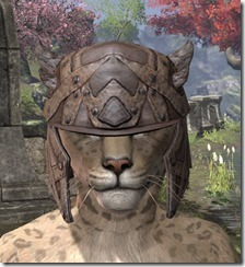Ancient-Orc-Rawhide-Helmet-Khajiit-Female-Front_thumb.jpg