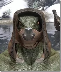 Assassins-League-Rawhide-Helmet-Argonian-Male-Front_thumb.jpg