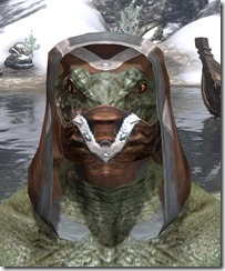 Dark-Brotherhood-Rawhide-Helmet-Argonian-Male-Front_thumb.jpg