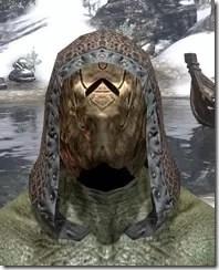 Hollowjack-Iron-Helm-Argonian-Male-Front_thumb.jpg