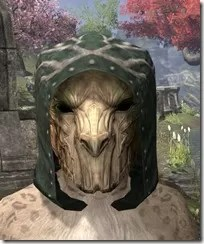 Hollowjack-Rawhide-Helmet-Khajiit-Female-Front_thumb.jpg