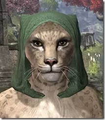 Imperial-Hat-1-Khajiit-Female-Front_thumb.jpg