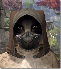 Outlaw-Rawhide-Helmet-Khajiit-Female-Front_thumb.jpg