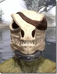 Pirate-Skeleton-Visage-Argonian-Male-Front_thumb.jpg