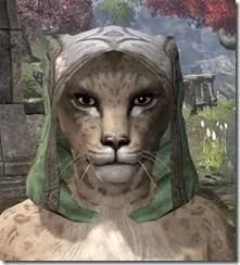 Ancient-Elf-Homespun-Hat-Khajiit-Female-Front_thumb.jpg