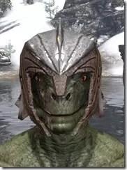 Ancient-Elf-Rawhide-Helmet-Argonian-Male-Front_thumb.jpg