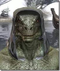Daedric-Homespun-Hat-Argonian-Male-Front_thumb.jpg