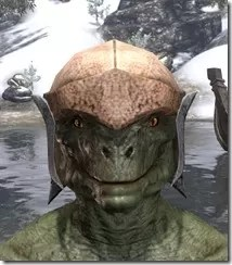 Dark-Elf-Hat-1-Argonian-Male-Front_thumb.jpg