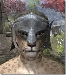 Dark-Elf-Hat-2-Khajiit-Female-Front_thumb.jpg