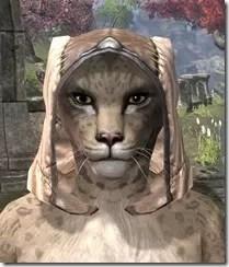 High-Elf-Hat-1-Khajiit-Female-Front_thumb.jpg