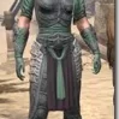Dragonguard-Homespun-Female-Shirt-Front_thumb.jpg