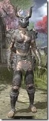 Stags-of-Zen-Iron-Khajiit-Female-Front_thumb.jpg