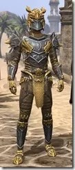 Ancient-Dragon-Hunter-Male-Front_thumb.jpg
