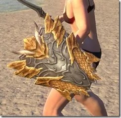 Ancient Dragon Hunter Shield 2