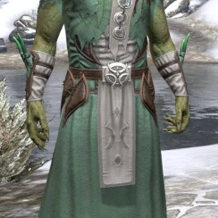 New Moon Priest Homespun - Argonian Male Robe Front