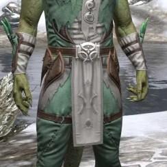 New Moon Priest Homespun - Argonian Male Shirt Front