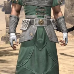 Shield of Senchal Homespun - Male Robe Front