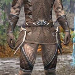 Ancestral High Elf Homespun - Male Shirt Front