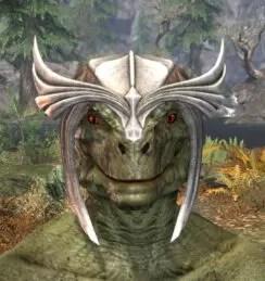 Ancestral High Elf Rawhide Helmet - Argonian Male Front