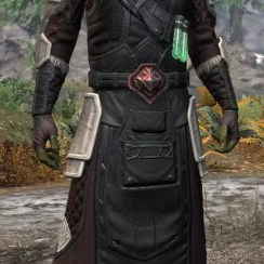 Hazardous Alchemy Light - Argonian Male Robe Front