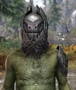 Stone Husk - Argonian Male Front