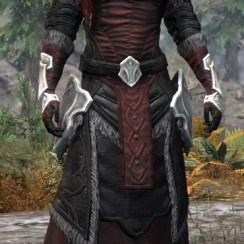 Thorn Legion Light - Khajiit Female Robe Front