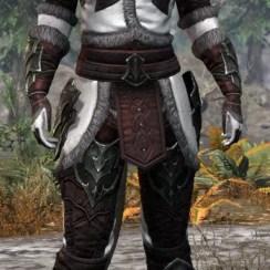 Thorn Legion Medium - Khajiit Female Front