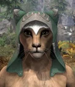 Greymoor Homespun Hat - Khajiit Female Front