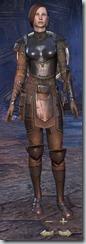 Breton Dragonknight Novice - Female Front