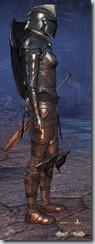 Breton Dragonknight Veteran - Female Right