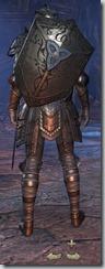 Breton Dragonknight Veteran - Male Back