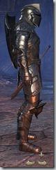 Breton Dragonknight Veteran - Male Right