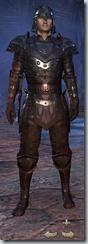 Breton Nightblade Veteran - Male Front