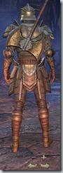 Breton Templar Veteran - Male Back