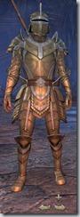 Breton Templar Veteran - Male Front