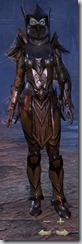 Dark Elf Dragonknight Veteran - Female Front