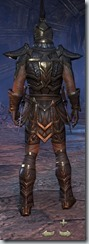 Dark Elf Nightblade Veteran - Male Back