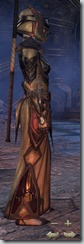 Dark Elf Sorcerer Veteran - Female Right