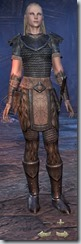 Nord Dragonknight Novice - Female Front