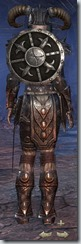 Nord Dragonknight Veteran - Female Back