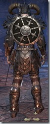 Nord Dragonknight Veteran - Male Back
