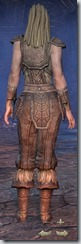 Nord Nightblade Novice - Female Back