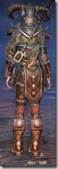 Nord Templar Veteran - Female Back